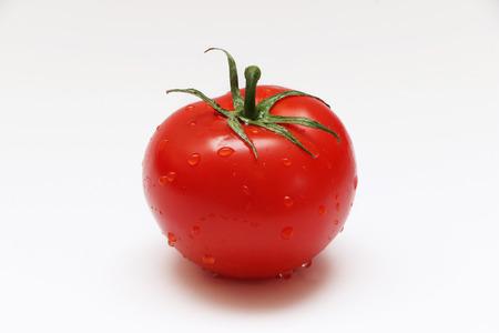 토마토 스톡 콘텐츠