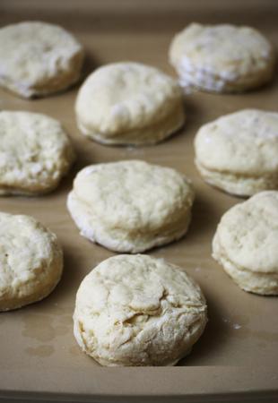dough: Biscuit Dough