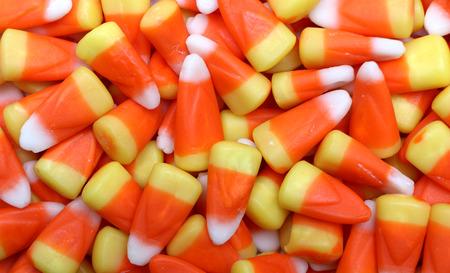 사탕 옥수수