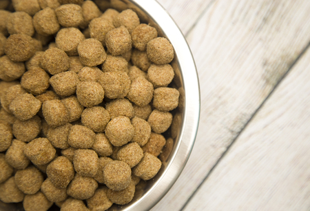 Dry Dog Food in a Silver Bowl Stock Photo