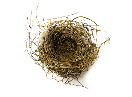 Natural Birds Nest on a White Background
