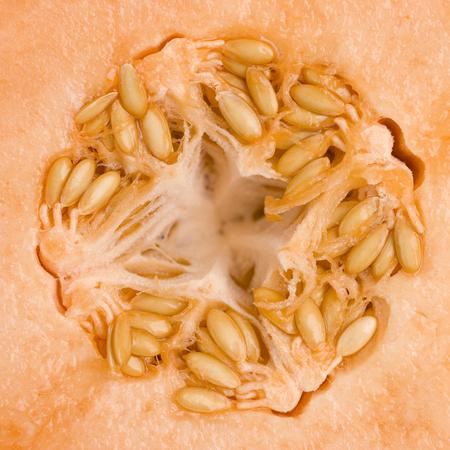 Frisse zomer Cantaloup Stockfoto