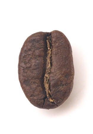 Single Roasted Coffee Bean on a White Background
