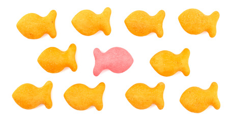 FIsh Shaped Cheese Crackers on a White Background