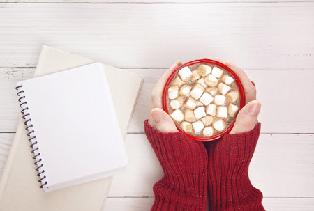 A Personal Holding a Mug of Hot Chocolate with Marshmallows with a Novel to Read Stock Photo