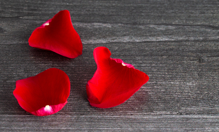 Fresh Red Rose Petals Fallen on a Grey Wooden Table