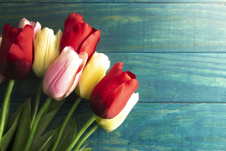 A Background of Red Pink and Yellow Tulips on a Teal Wood Surface 版權商用圖片