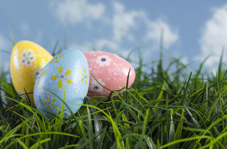 Decorated Easter Eggs Hiding in the Grass on a Beautiful Spring Day Banque d'images