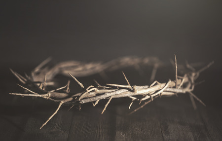 Jesus Crown of Thorn in a Moody Environment