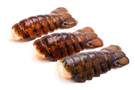 Contes de homard cru isolé sur fond blanc