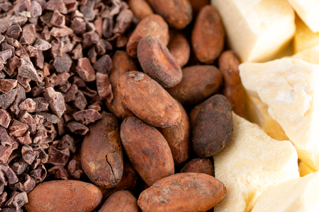 A Background of Rows of Chocolate Nibs Cocoa Beans and Cocoa Butter