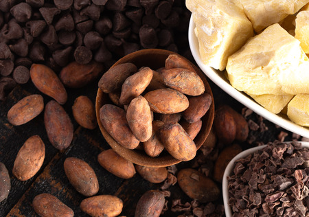 Various Stages of Chocolate Production Cocoa Nibs Cocoa Butter Cocoa Beans and Chocolate Chips