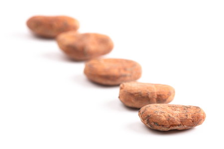 Raw Cocoa Beans Isolated on a White Background Foto de archivo - 122562893