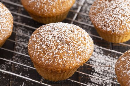 Pumpkin Spice Muffins Topped with Powdered Sugar on a Rustic Wooden Table Stock Photo