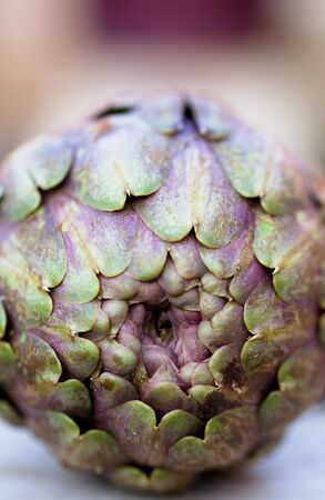 Close-up of the bottom of an artichoke.