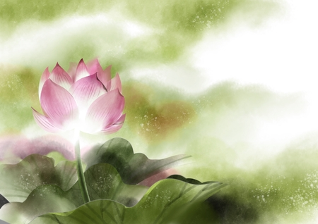 Watercolor with pink lotus flowers, illustration painting