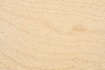 Texture of birch plywood photo