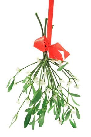 Close-up of a bunch of mistletoe (Viscum album) 版權商用圖片
