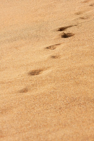 Footprints in the sand Stock Photo - 10104672