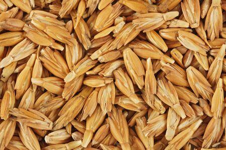 grist: Dried spelt