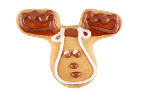Gingerbread reindeer photo