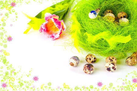 A card of easter eggs in the nest framed by rendered flowers photo