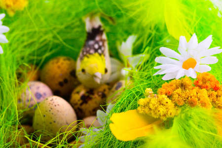 Nest with quails eggs and birds among flowers photo