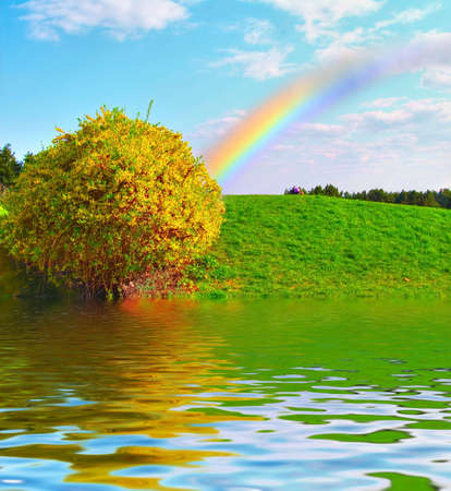Rainbow over the green meadow and multicolored bush in bloom photo