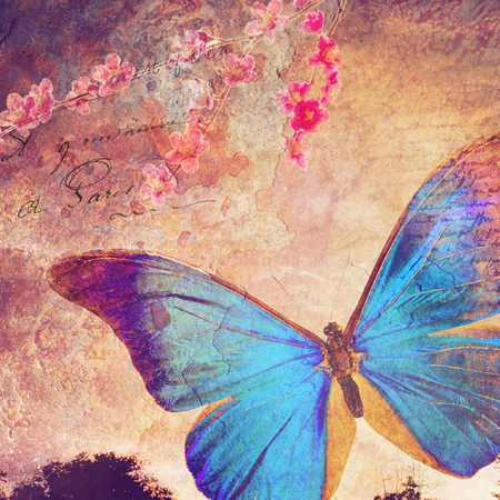 grungy header: Blue butterfly background, old paper design, postcard, printable on canvas, good for scrapbooking