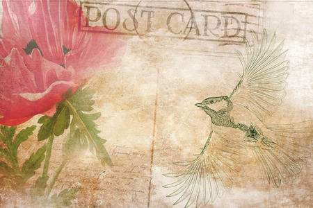 digital printing: Vintage postcard background with bird and flower. Digital art.  Illustration for greeting cards, invitations, and other printing projects.