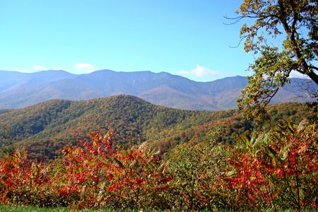 View Of Fall Foliage and Beautiful Mountains From Overlook on Blue Ridge Parkway In North Carolina