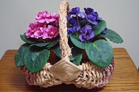violets: Basket Of Violets