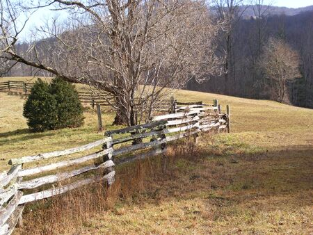 Old Fence photo