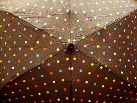 Polka Dot Umbrella With Rain Drops