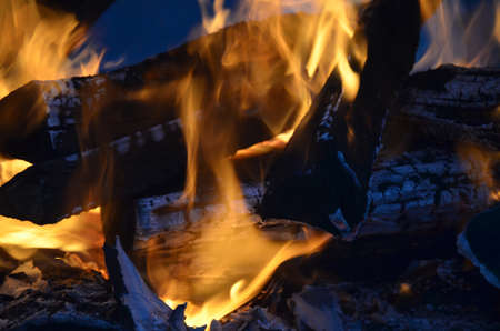 woodfire: A close up image of the flames on a campfire.
