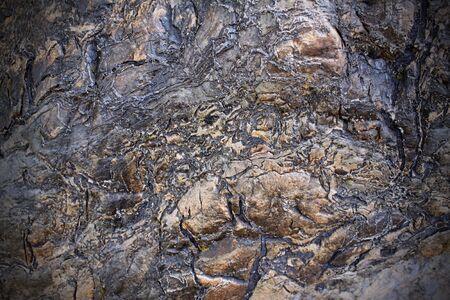 Una imagen de cerca de textura de la roca extraña.