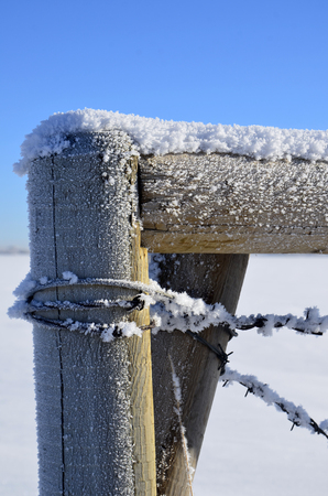 fence post: An  image of a fence post covered in frost crystals.