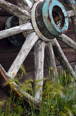 carreta madera: Una imagen de una rueda de carro de madera vieja.