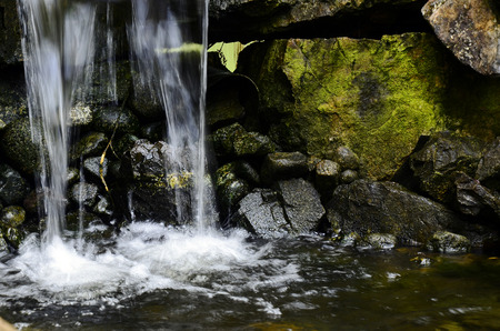 feature: An image of a indoor water pond feature.