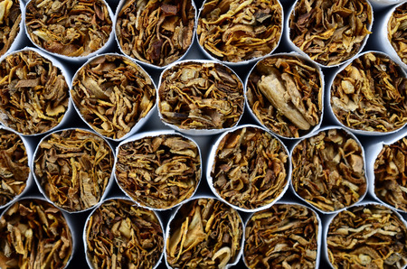 commercially: A close up image of the tobacco end of commercially made cigarettes.