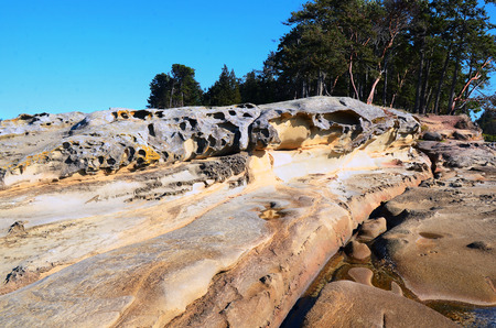 geological feature: An image of a geological rock feature on Gabriola Island, British Columbia, Canada. Stock Photo