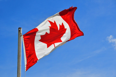 An image of a Canadian flag waving in a breeze against a clear blue sky.