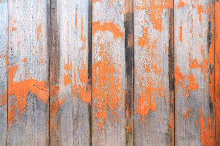 painted wood: Abstract painted wood texture.