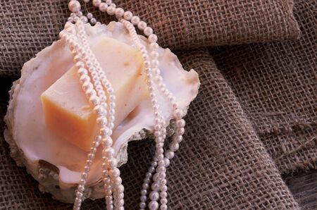 oyster shell: A top view image of a bar of homemade soap on an oyster shell. Stock Photo