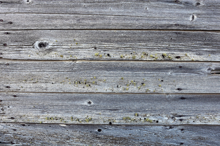 Old Grey Wood Texture Stock Photo