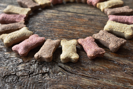 Dog Biscuit Background