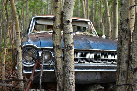 Vintage Vehicle Wreckage
