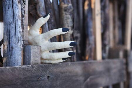 Creepy Monster Hand