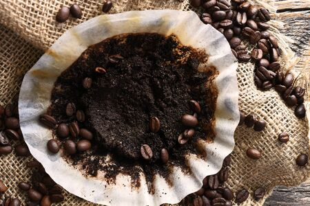 Used Coffee Filter Close Up