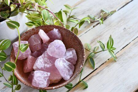 Rose Quartz Crystal and Lush Green Plant